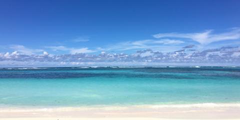 Sunny, picturesque beach