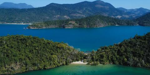 Cotia Island