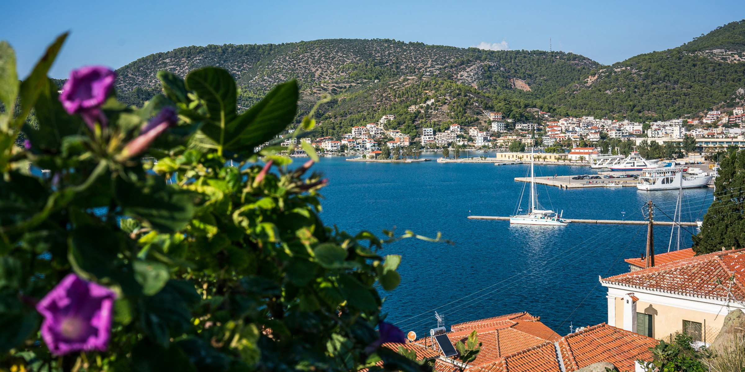 Greece Flowers Town