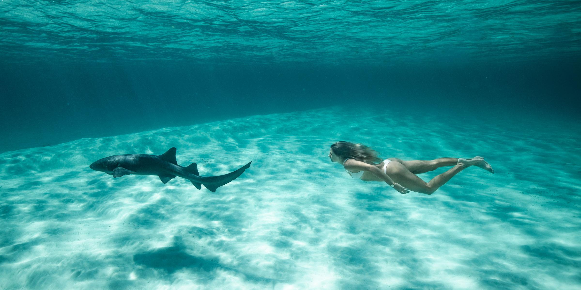 woman_swimming_with_nurse_shark_exumas_bahamas_2400x1200_web.jpg?t=1KLfk7&itok=z_Juti56